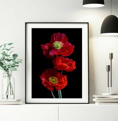POPPY FLOWER PRINT~Digital Download Photography~Still Life Artwork~Printable Fine Art~Red & Black Bedroom Decor~Instant Floral Wall Art Red Black Bedrooms, Black Bedroom Decor, Red Poppies, Red Flowers, Professional Photo Lab, Floral Wall Art, Photo Colour, Beautiful Artwork, Flower Prints