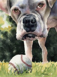 WHITE BOXER Dog Art Print Signed by Artist DJ Rogers