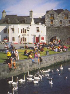 Spanish Arch, Galway, Ireland Eating fish and chips  + drinking bulmers :)