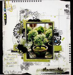 NATURE is my bliss .. case file #139 (via Bloglovin.com )