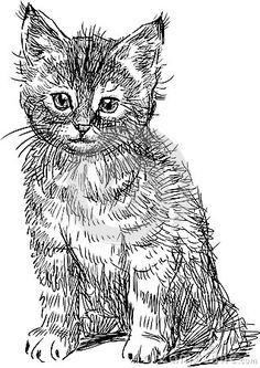 Sitting kitten by Makar, via Dreamstime