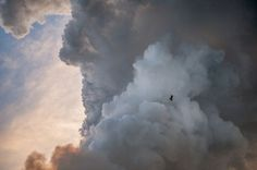 BY NICKY STONE Marcus Beach, Australia A sea eagle flies past billowing smoke from a bush fire.