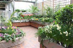 Royal Botanical Gardens,Burlington