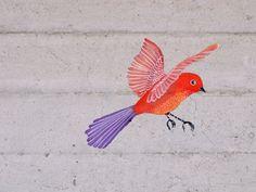 little bright bird