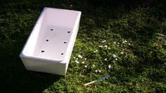 The Self-Sufficient Gardener ~ using polystyrene foam boxes (we do this at our place...great tips here! ReduceReuseRecycle :)