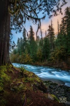 Olympic National Park, Washington
