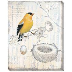 Aviary Scrapbook I Canvas Wall Art by Norman Wyatt Jr