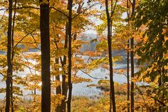 """Gatineau Park is full of unique and fascinating places to view the magnificent fall colours. Of course, there are several """"must-see"""" spots, such a..."""