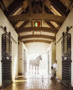 Necessary to have a big gray at the end of the barn aisle. And also to have a lounging model just inside the doorframe.
