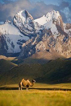 Tien Shan Mountain Range . Kyrgyzstan