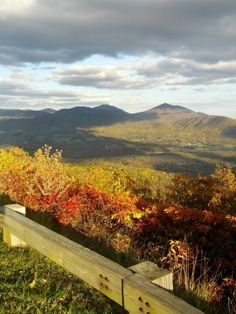 The Blue Ridge Parkway is best known for the Fall foliage, but the views are spectacular year-round. Where else can you drive on a National treasure, only 10 minutes from downtown?