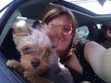 My puppy's fur blowing in the warm summer wind  #loveisfree
