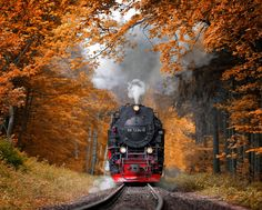 Autumn Journey A steam train in the Harz mountains (Germany). By: Alexander Riek Motor A Vapor, Old Trains, Train Tracks, Amazing Nature, The Great Outdoors, Beautiful Places, Beautiful Sky, Amazing Places, Wonderful Places