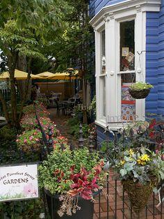 Droid Upload - Small patio garden on West Pomfret Street, Carlisle, Pennsylvania, USA