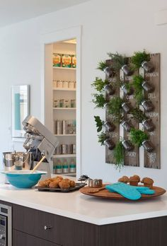 An herb garden wall in the kitchen is a convenient way to get fresh herbs for your favorite foods year round --- yay or nay?   #coolkitchens #homegarden #freshherbs