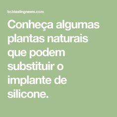 Conheça algumas plantas naturais que podem substituir o implante de silicone.