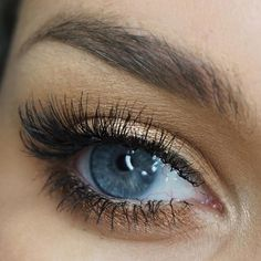 I am obsessed with individual lashes. Would you guys like a video on how to apply them?  I'm using Single, Double, and Triple Le Petit lashes by @houseoflashes