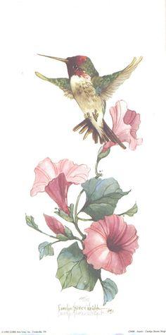 Anna's Hummingbird 12 x 6 lithograph   CShoresInc - Print on ArtFire