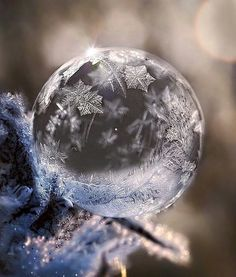 small exchange gift for someone special Snowflake Photography, Winter Photography, Creative Photography, Amazing Photography, Nature Photography, Frozen Bubbles, Soap Bubbles, Winter Scenery, Winter Magic