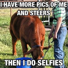 Me and Cows!