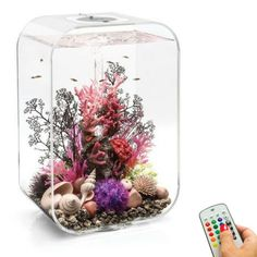 biOrb Life 45L/12G All-in-One Acrylic Aquarium Kit with Multicolor Light - Clear (45874)