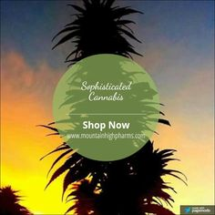Sophisticated Cannabis - Google+