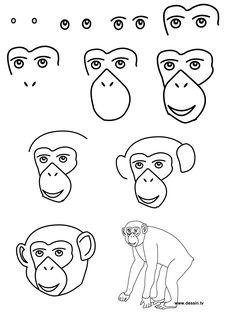 How to draw a chimpanzee