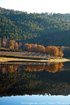 Perfect reflections, Viseu, Portugal