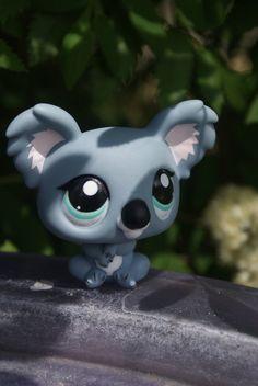 littlest pet shop koala bear