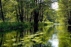 National Parks of North-east Poland - Eko-tourist