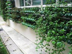 Singapore-Vertical-Garden.jpg (600×450)