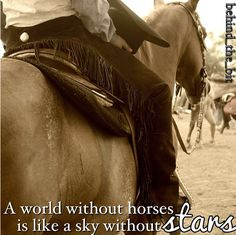 A world without horses is like a sky without stars..