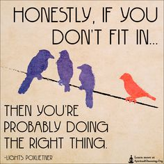 Honestly, if you don't fit in then you're probably doing the right thing.—Now go do the right thing.