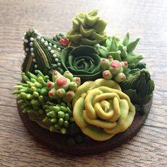 Succulents and cactus... 多肉植物の寄せ植え的な…  #icingcookie #sugarcookies #cookieart #sugarcraft #cookiedecorating #decoratedcookies #succulent #cactus #fun #foodart #royalicing #クッキー #アイシングクッキー #アイシングクッキーレッスン #ワークショップ #多肉植物 #サボテン #寄せ植え #シュガークラフト #遊び