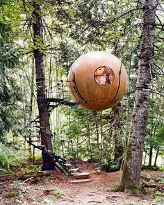 Tree House ♡