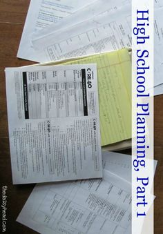 Planning High School Part 1  http://www.thedaisyhead.com/2013/05/high-school-planning-part-1/