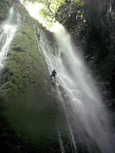 Madeira no seu melhor #madeiraisland #beautifuldestination #nature