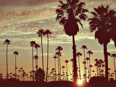 I'm proud to be a California Girl