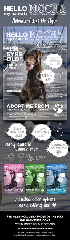 "Animals – Adopt Me Flyer (available at Gpaphic River) designed ideally for Adoption Centres, Charity events or for personal use. Dog image and many icons included with unlimited colour options. Flyer size made in 4×6"" with 0.25 bleed in CMYK at 300dpi. Download includes a Photoshop file with fully editable text & well organised layers + a help file."