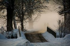 Foggy winter day in Jona, Rapperswil Moment Of Silence, Winter Day, Mother Nature, Winter Wonderland, Snow, In This Moment, Outdoor, Photos, Europe