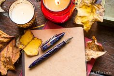 Let your writing glow with the Edison Nouveau Premiere Autumn Embers Fall 2016 SE Fountain Pen, available from Goulet Pens for a limited time only. Pin for later.