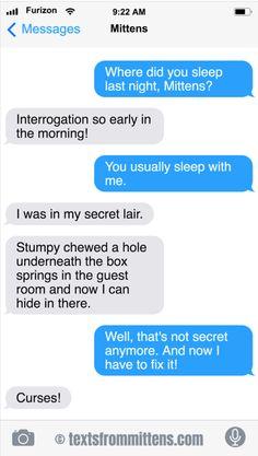 Texts from Mittens Funny Cartoon Memes, Funny Jokes, Crazy Cat Lady, Crazy Cats, Text From Mittens, Cat Text, Dog Texts, Funny Stuff, Random Stuff