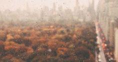 Just Pinned to Autumn: gllowsticks: autumn aesthetic...