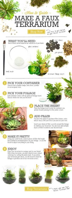 How to Make a Faux Terrarium - complete diy instructions!