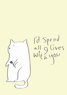 And that's the truth - If I had nine lives!