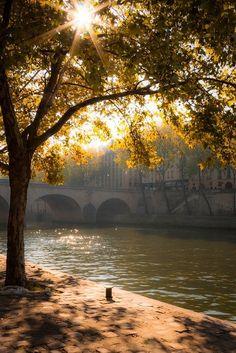 Morning Light, Paris