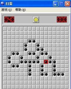 there's something wrong with minesweeper