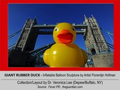 GIANT RUBBER DUCK  (50' Tall)  [2012].12/11 @ ENGLAND – London: River Thames --- Passing under Tower Bridge // inflatable balloon Sculpture floating around the world to spread Peace/Goodwill