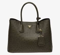 Oh YES! I wish my boyfriend would buy me a  steve madden handbag !!! Alice  has to get this .