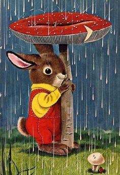 <3 Hasi im Regen <3